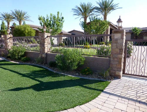 Common Landscaping Problems in Las Vegas